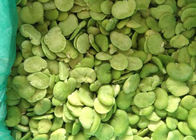 Green IQF Frozen Food / Frozen 100% Fresh Double Peeled Broad Beans